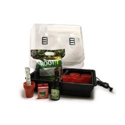 Pack bouturage Thermo Premium