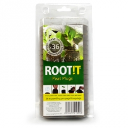 ROOT!T Pastilles TOURBE - Pack de 36