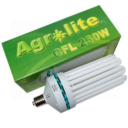 agrolite-cfl-250w-croissance-6400k