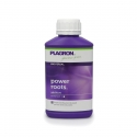 Power Roots 500ml - Plagron