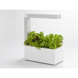 HERBIE Indoor Garden - Blanc