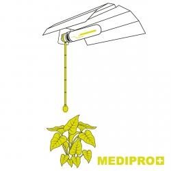 MEDIPRO+ - Clip pour douille E40 - Garden HighPro