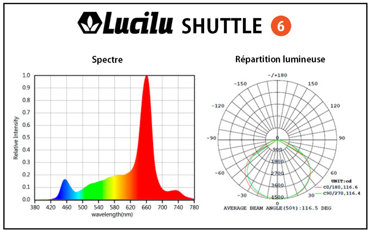 PAR Lucilu Shuttle 6