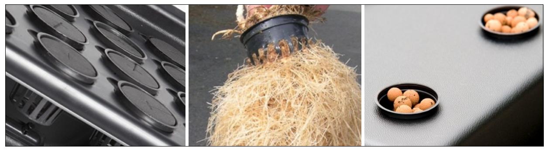 Racines de plante dans pot panier aéroponique 5.4 cm