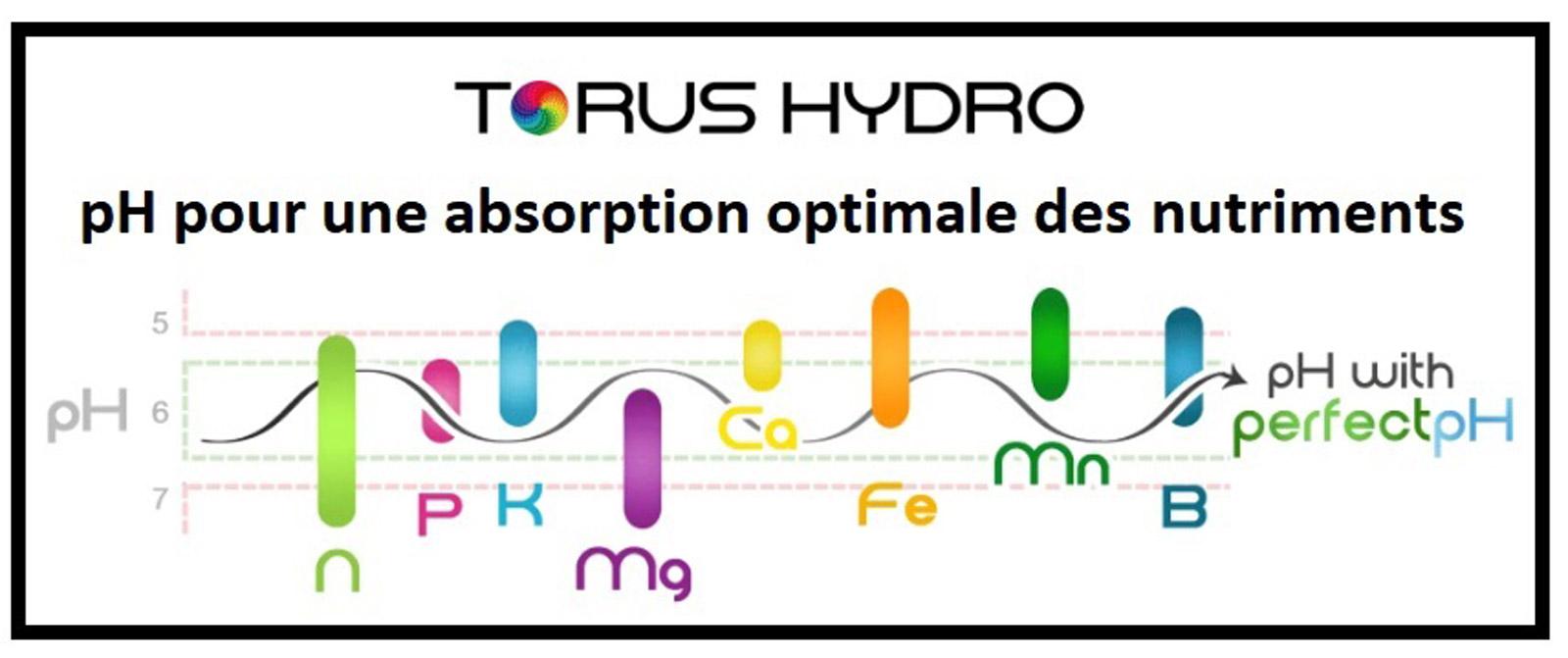 Régulateur de pH en ligne Torus Hydro