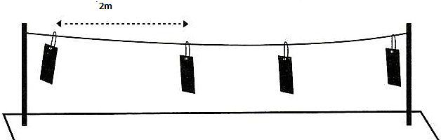 installation des plaques collantes sur fil dans le potager